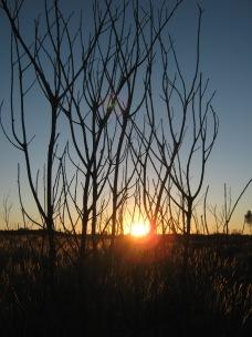 Sunset in Kata Jtuta National Park