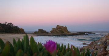 Wellington Rock